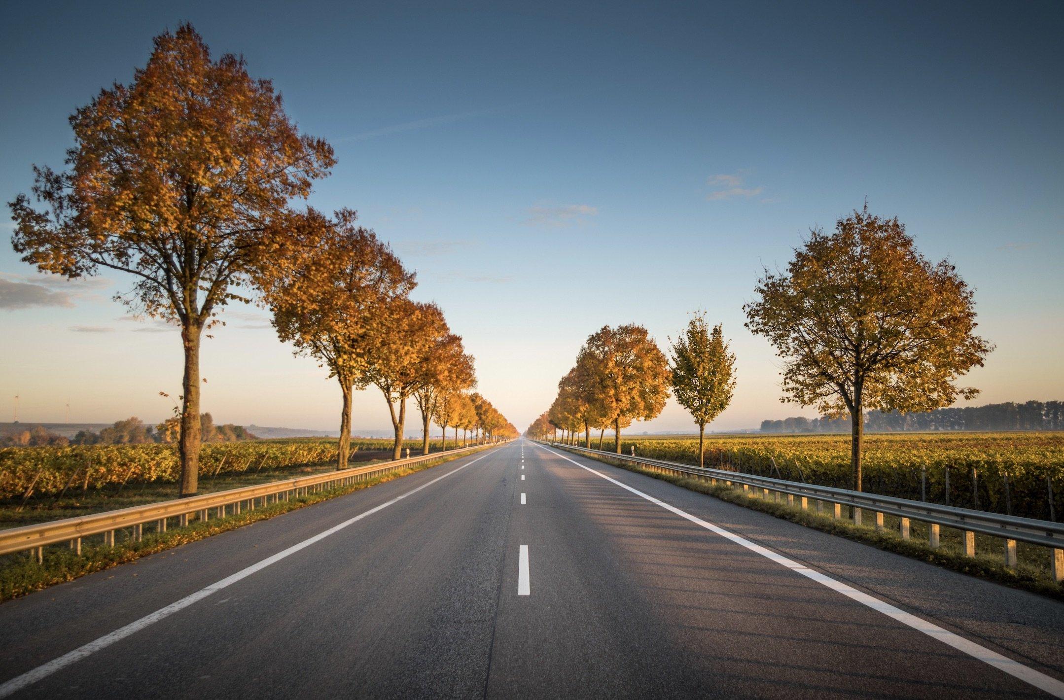 route avec des arbres rougis d'automne